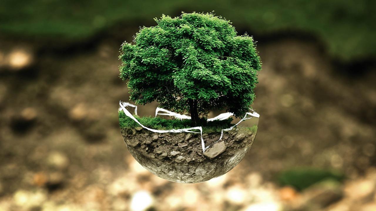 ESG投資とは?CSRとの違い、マイクロプラスチック問題から読み解く企業行動